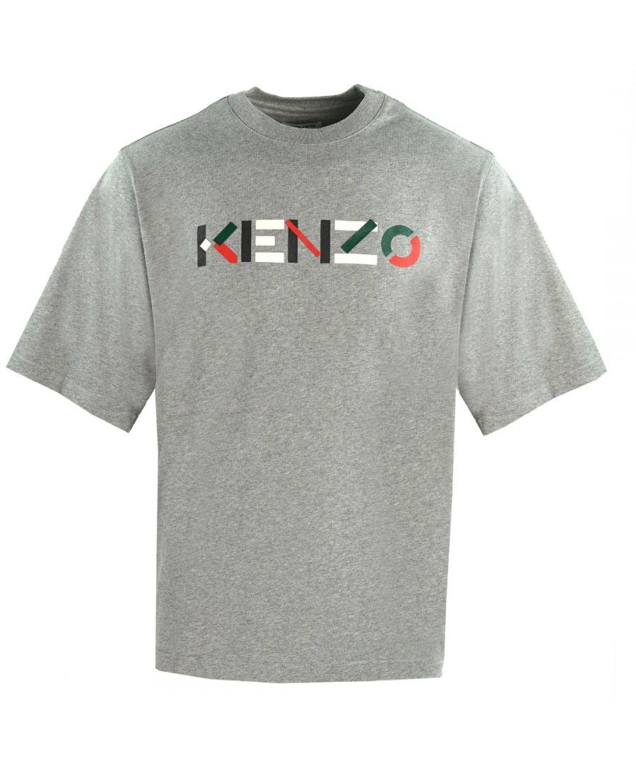 Image for Kenzo Mens Multicolour Logo Grey Oversized T-Shirt