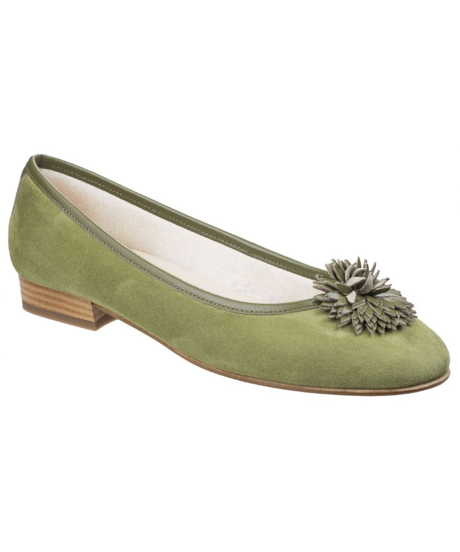 Image for Iseo Suede Ballerina Court Shoe