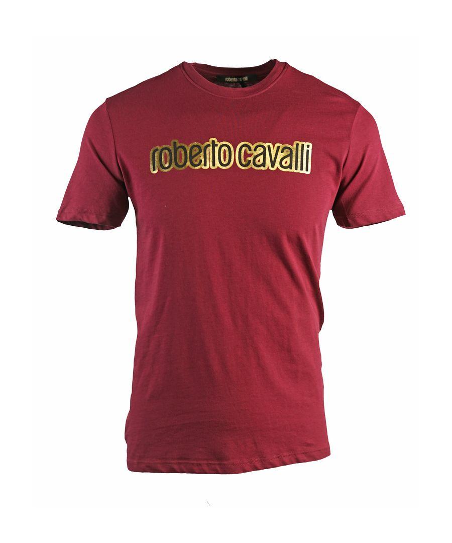 Image for Roberto Cavalli Brand Logo Burgundy T-Shirt