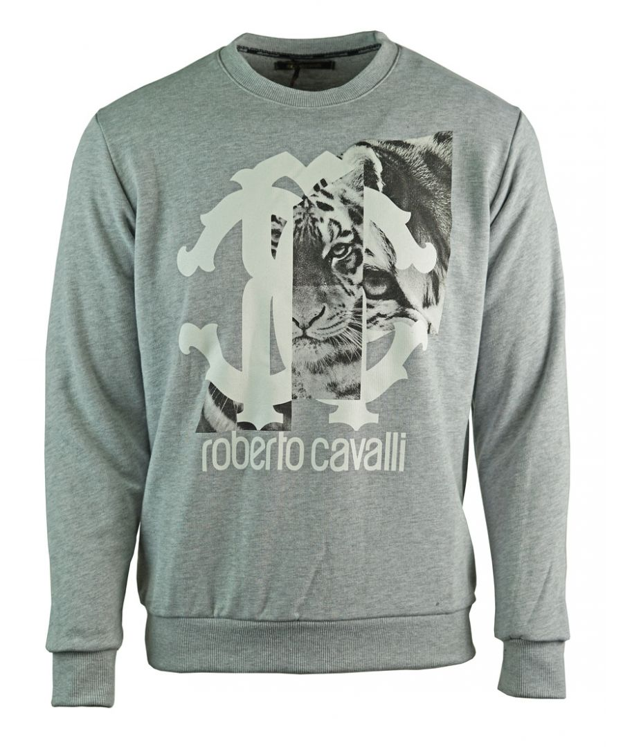Image for Roberto Cavalli Large Tiger Logo Grey Sweatshirt