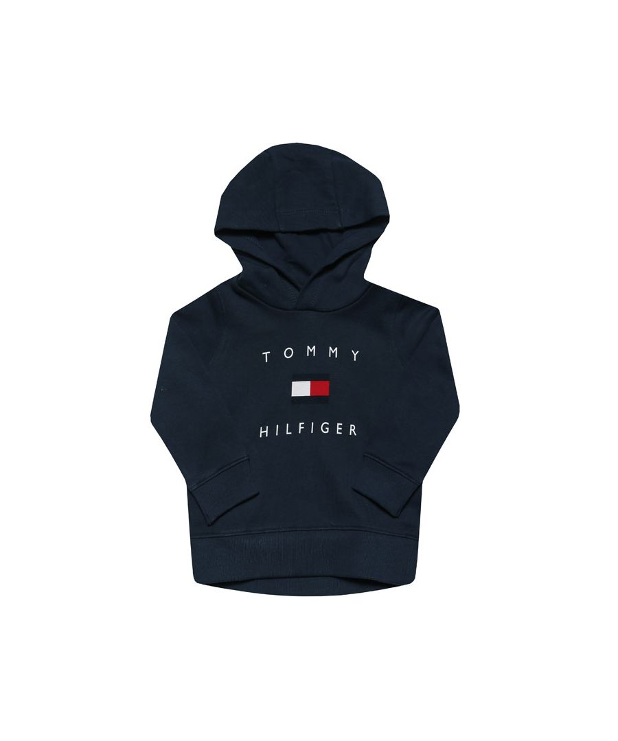 Image for Boy's Tommy Hilfiger Junior Logo Hoody in Navy