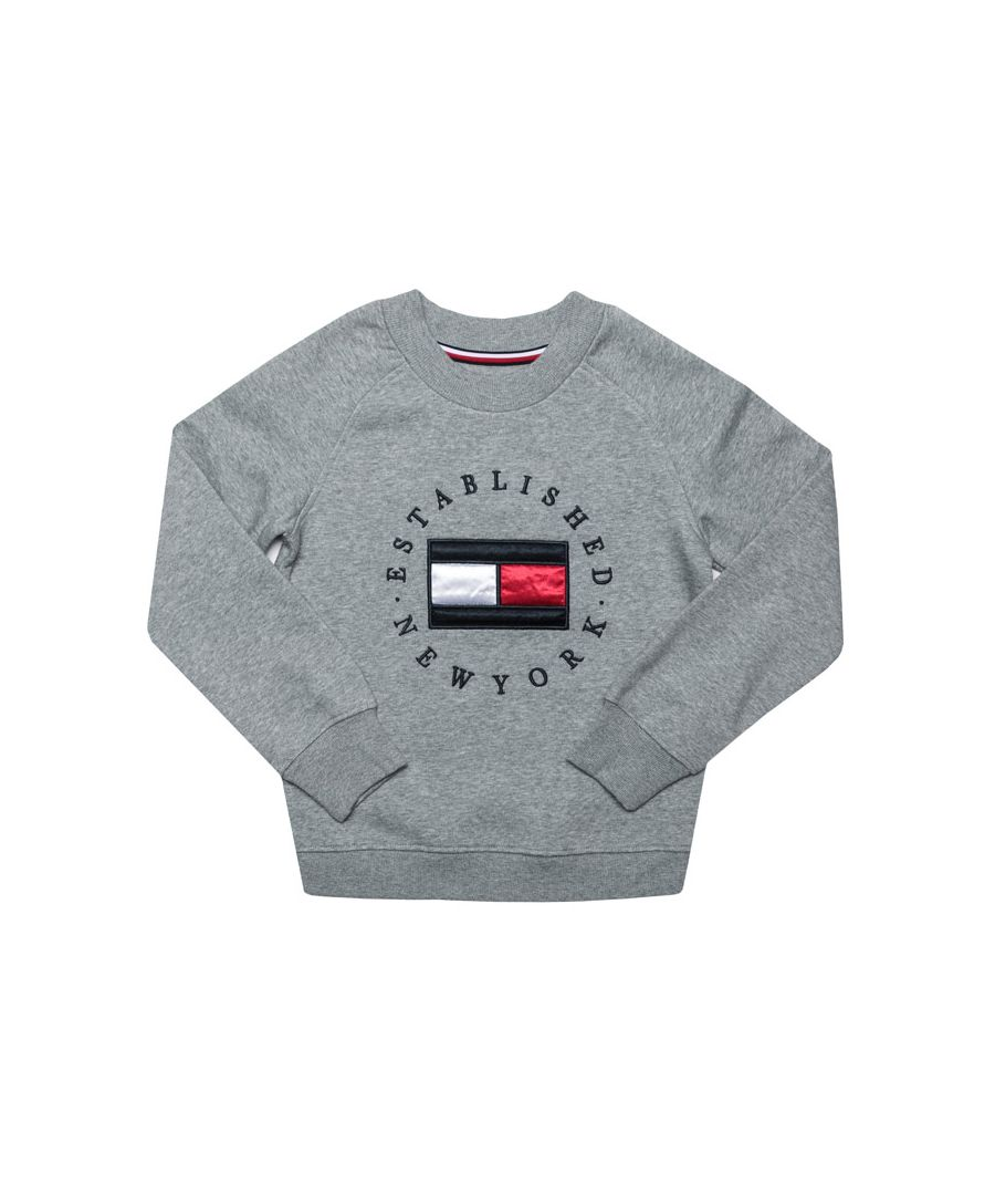 Image for Boy's Tommy Hilfiger Junior Heritage Logo Crew Sweat in Grey