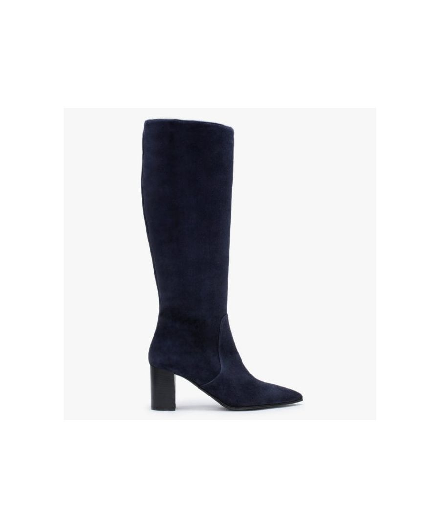 Image for Lamica Suede Pointed Toe Knee Boots