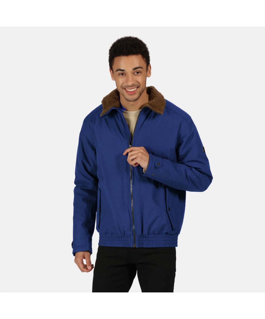 Image for Regatta Mens Rayan Waterproof Insulated Jacket (Bright Royal Blue)