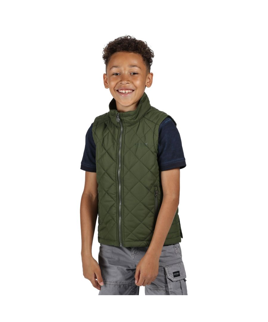 Image for Regatta Boys Zion Polyester Casual Bodywarmer Gilet