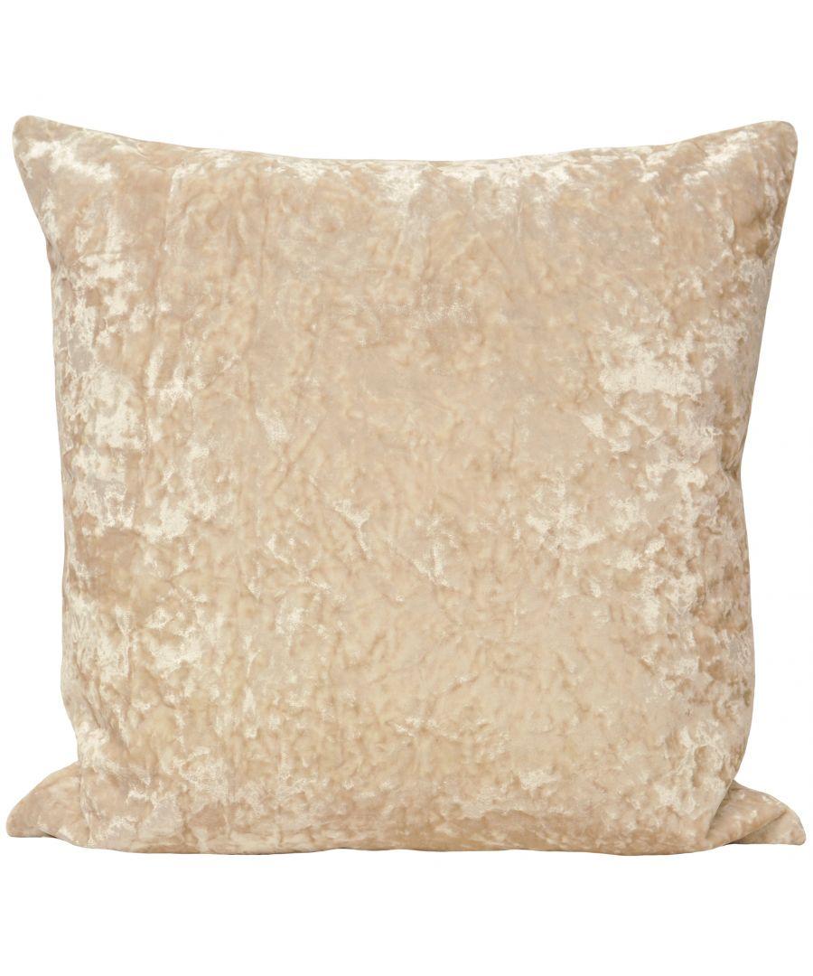 Image for Roma 50X50 Poly Cushion Ivory