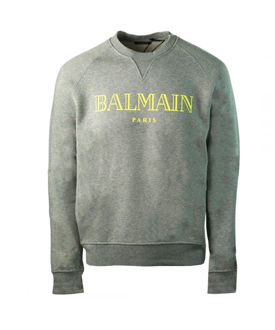 Image for Balmain Paris Velvet Logo Grey Sweater