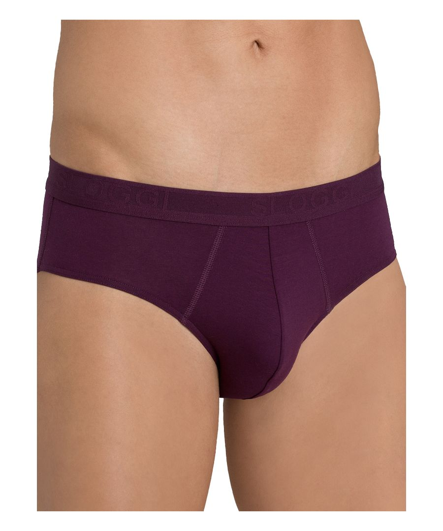 Image for *2 Pack* Evernew Midi Briefs