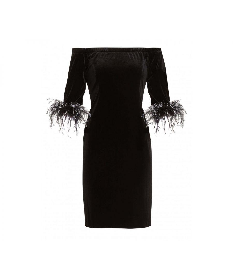 Image for Jorelle Velvet Feather Trim Dress