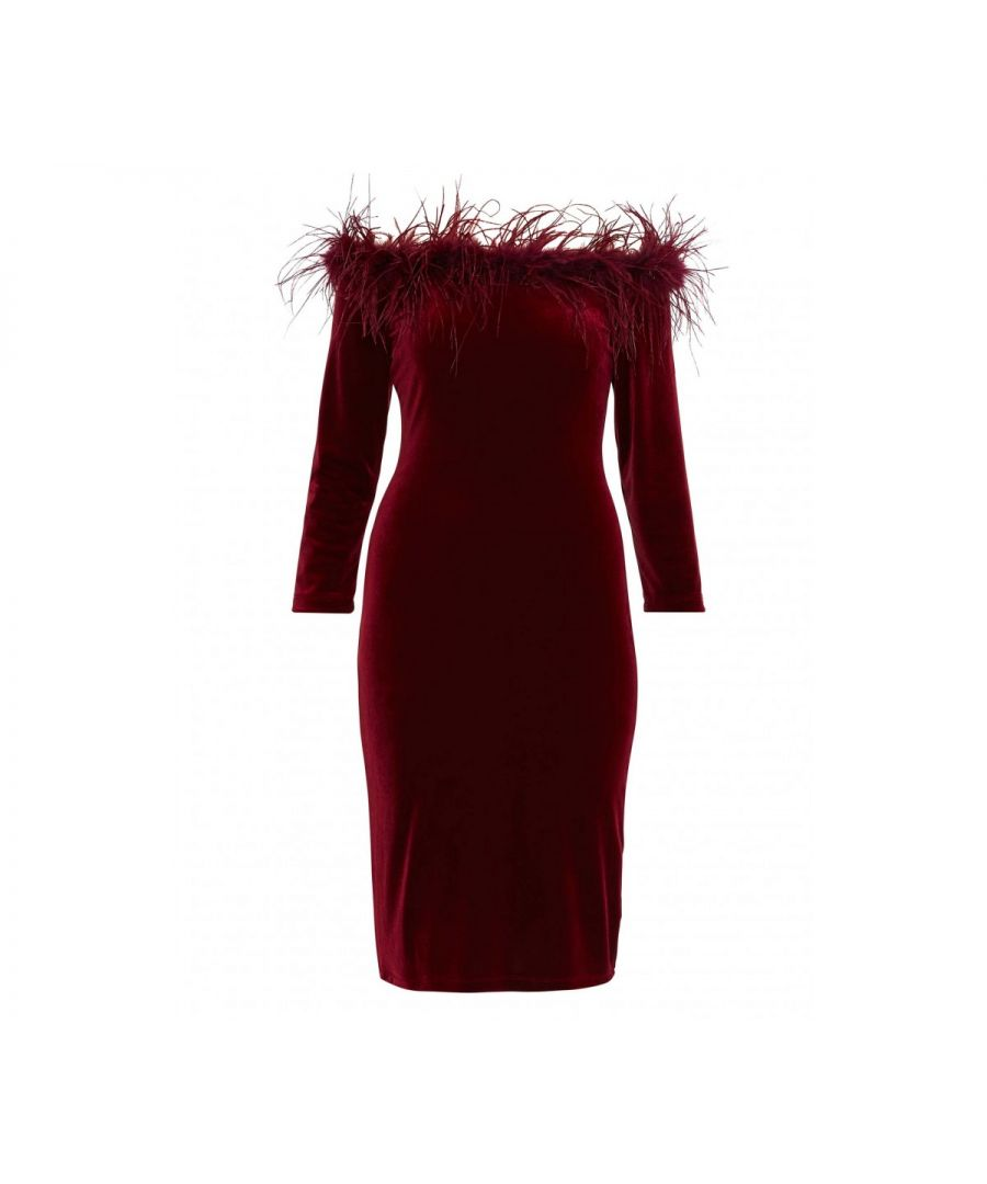 Image for Dania Feather Trim Dress