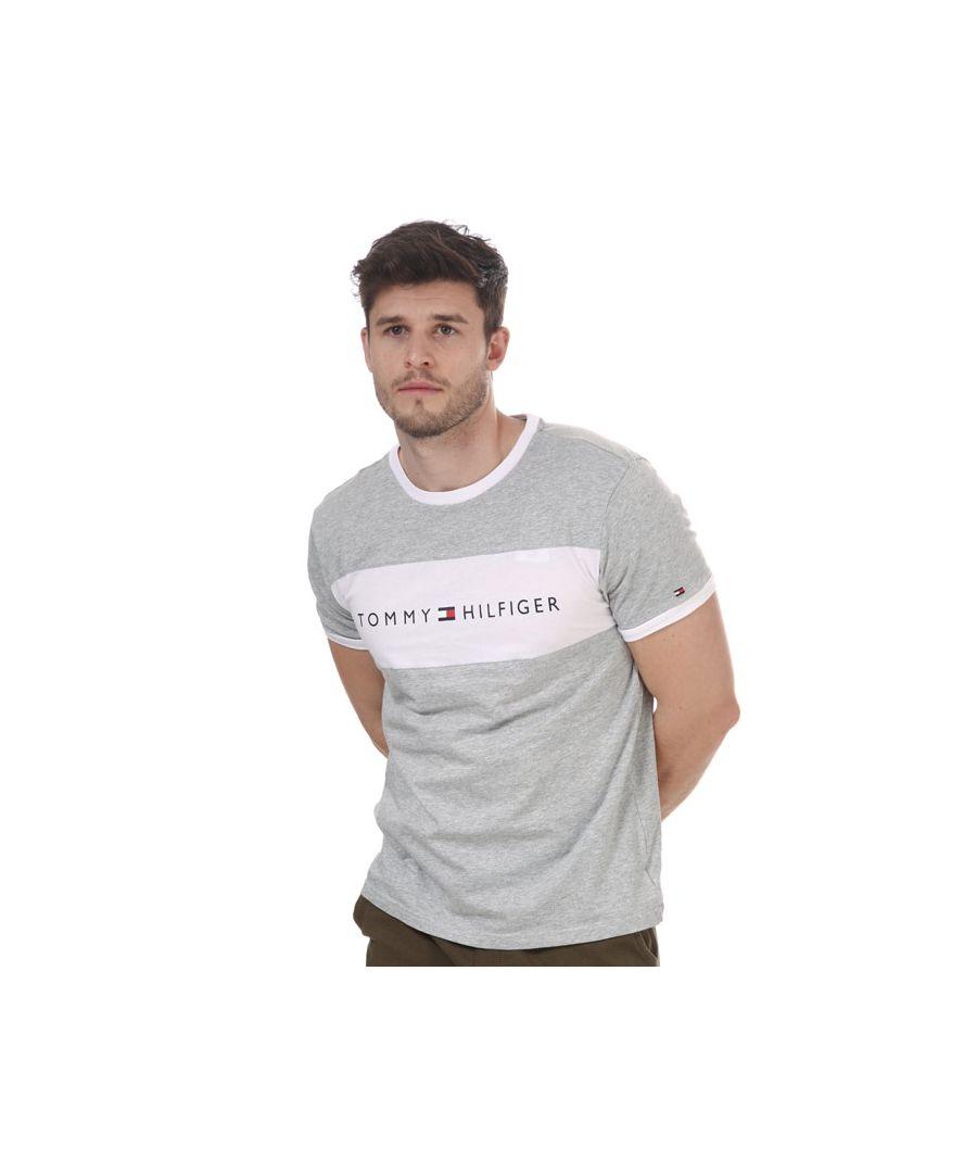 Image for Men's Tommy Hilfiger Logo Flag T-Shirt Grey Sin Grey