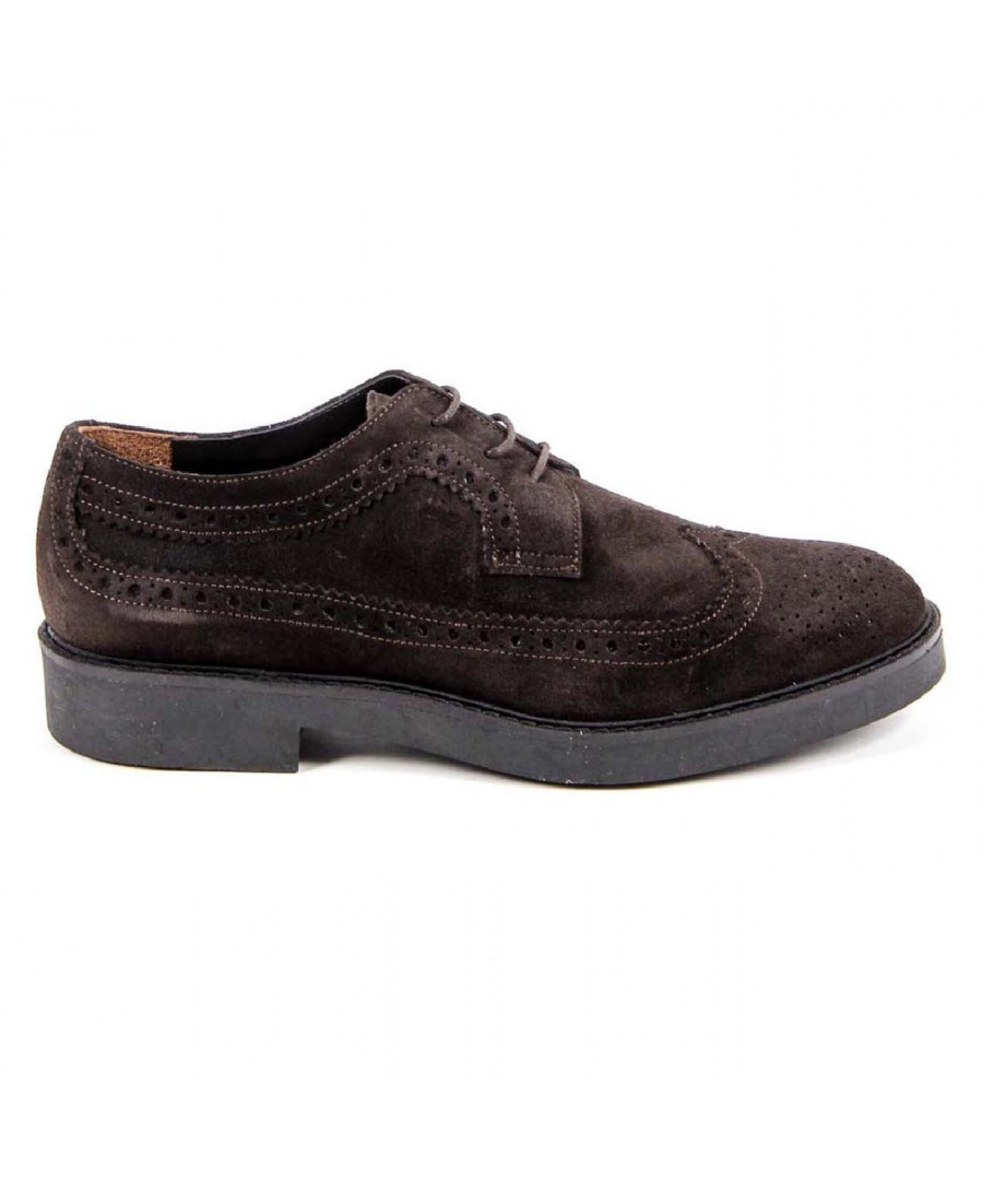 Image for V 1969 Italia Womens Brogue Shoe B1670 VELOUR T. MORO